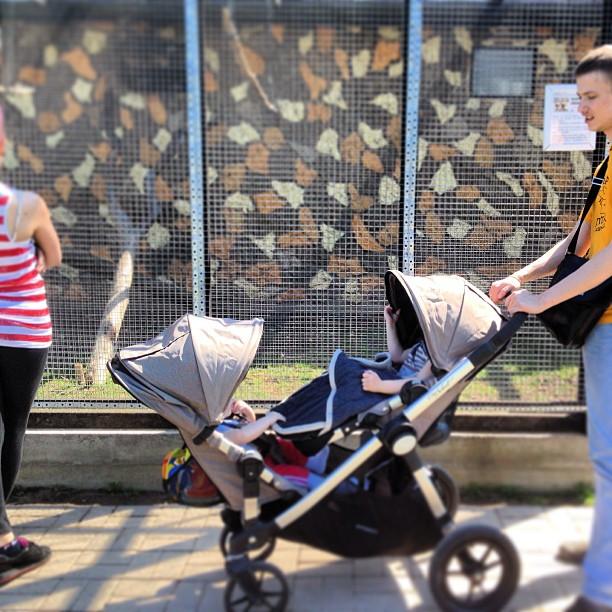 Продаю коляску (для погодок или двойни) из США Baby Jogger City Select за 25000