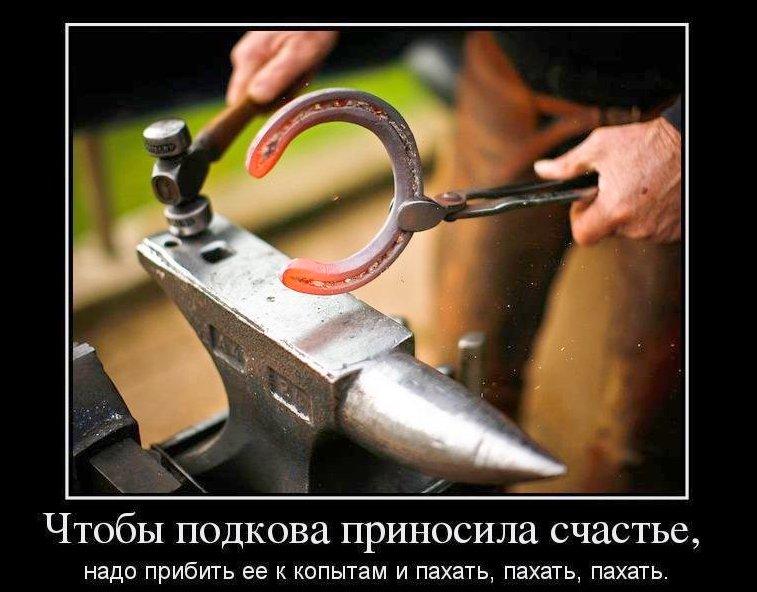 http://cdn4.imgbb.ru/community/49/493190/5b0cef3bdb8349f174ecedc1f2b290e4.jpg