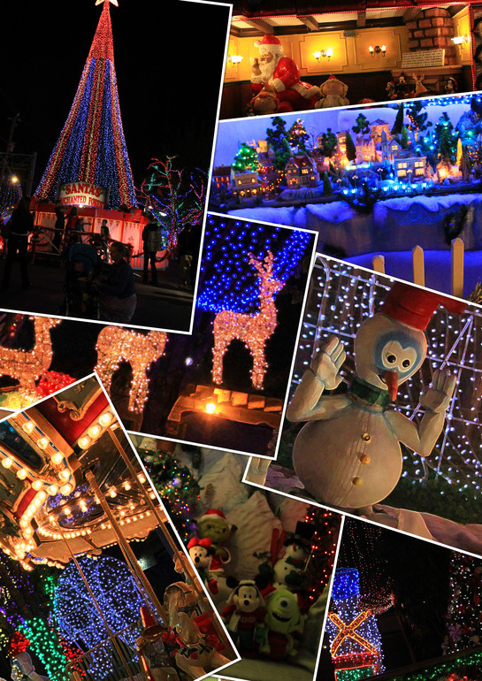 Парк Санты - новогодняя сказка в Майами (фото)