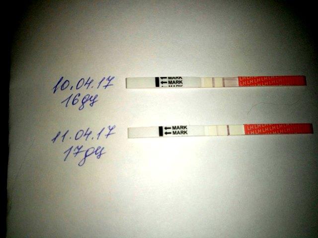Живот как у беременной но тест отрицательный 3