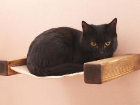 Гамак для кошки Форт-Старт
