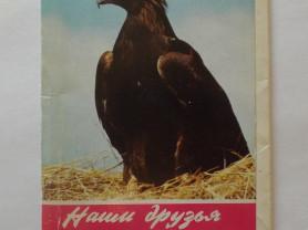 Наши друзья птицы. Комплект из 18 открыток Вып 3
