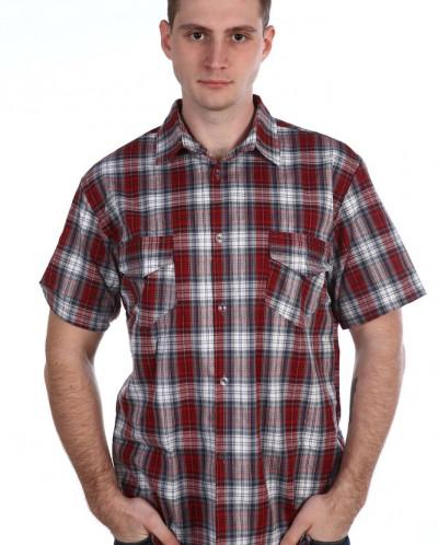 Рубашка мужская кор. рукав