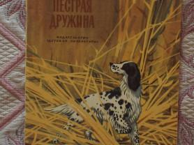 Семенов Пестрая дружина Худ. Архангельская 1974