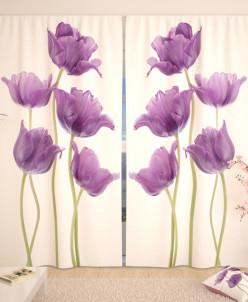 Фотошторы Пурпурные тюльпаны Габардин