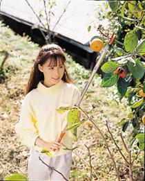 Плодосъемник NISHIGAKI (1м)