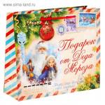 """Пакет  горизонтальный """"Подарок от Деда Мороза"""", ML(6шт)"""