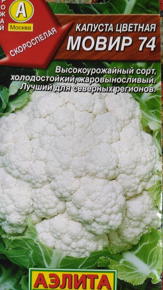 Капуста цветная мовир 74 выращивание 99