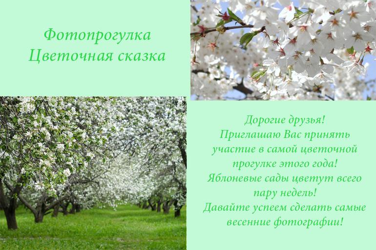 Фотопрогулка в Яблоневых садах