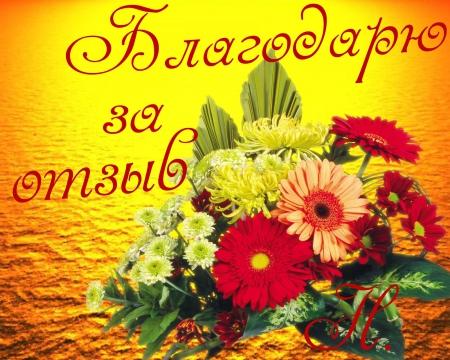 Image result for фото благодарю за отзыв