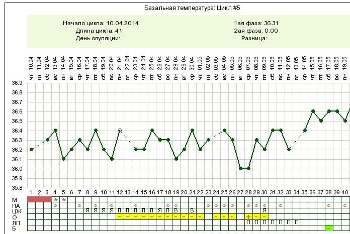 Температура тела перед месячными беременность