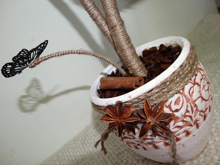 Мое первое кофейное деревце
