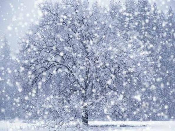 Зима началась в воскресенье )