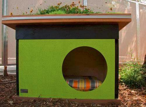 Будка для собаки для квартиры своими руками - Vingtsunspb.ru