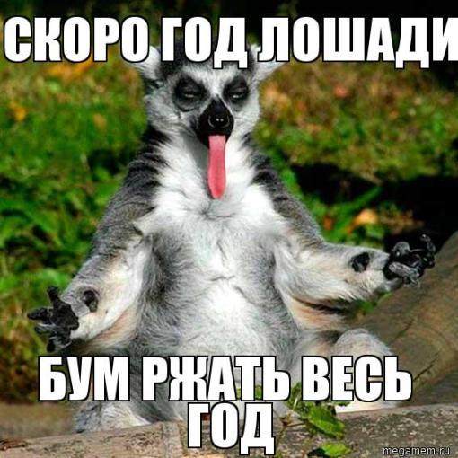 Смешное: лемур узбагойся :)