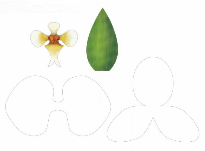 выкройки цветка орхидеи из фоамирана