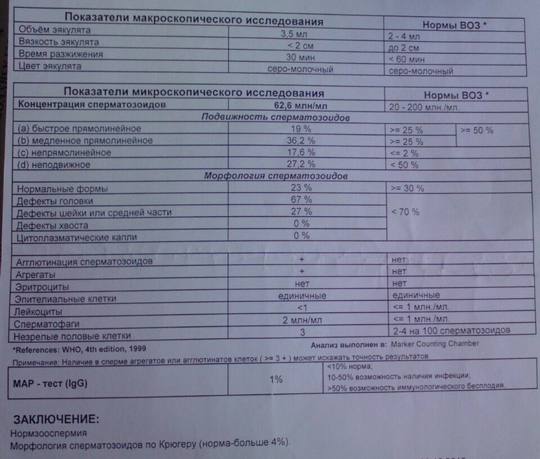 golie-devchonki-v-klipah