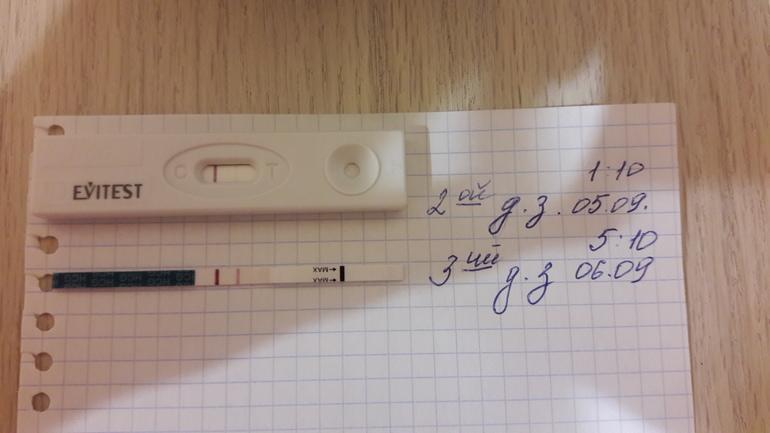 Как и когда сделать тест на беременность