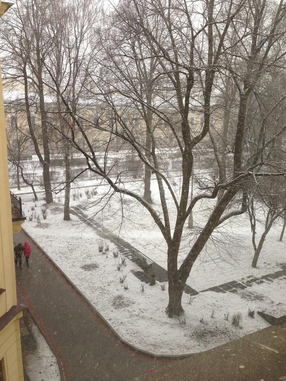 Зима вернулась...
