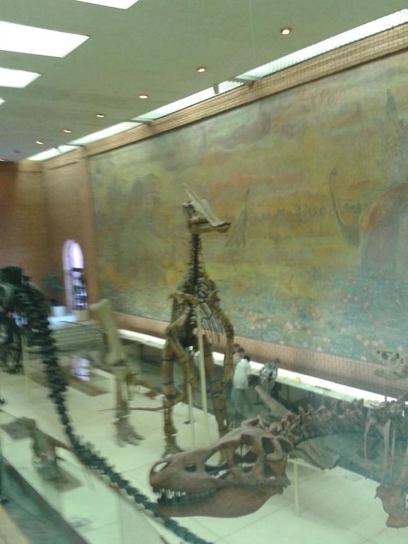 Вика в музее-в Палеотологическом