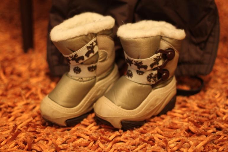 Зимний комплект Lenne + сноубутсы Demar