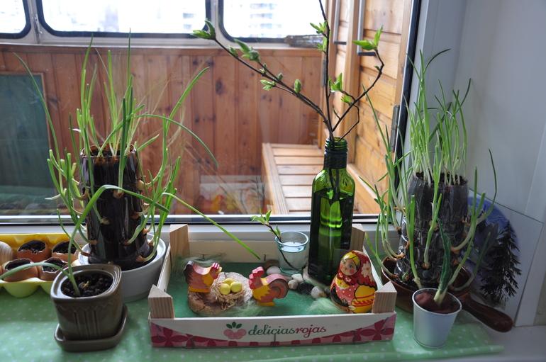 картинка массаж весна