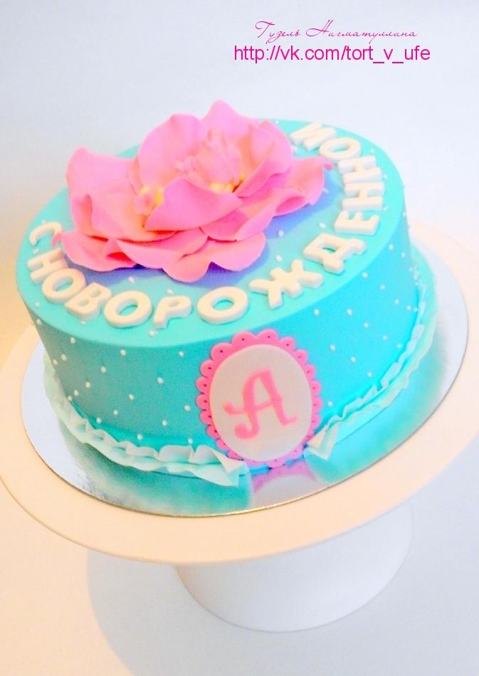 Торт с новорожденной!
