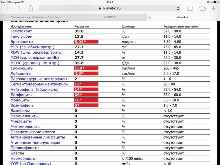 s ac0 52000888 report of vendor