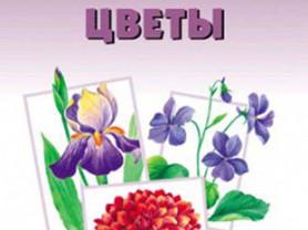 Цветы. Наглядно-дидактическое пособие (3 - 7 лет)