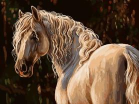 Картины по номерам GX 9901 Белая лошадь