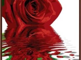 Картины по номерам GX 6321 Красная роза