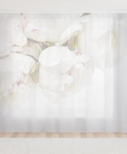 Фототюль Белые пионы в горшочке 300*240