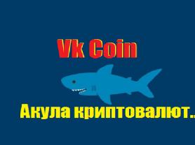 VK Coin криптовалюта нашего  времени