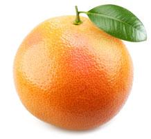 Ваш малыш по размерам словно грейпфрут