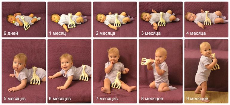 Картинки с 9 месяцев мальчику, мерцающая днем