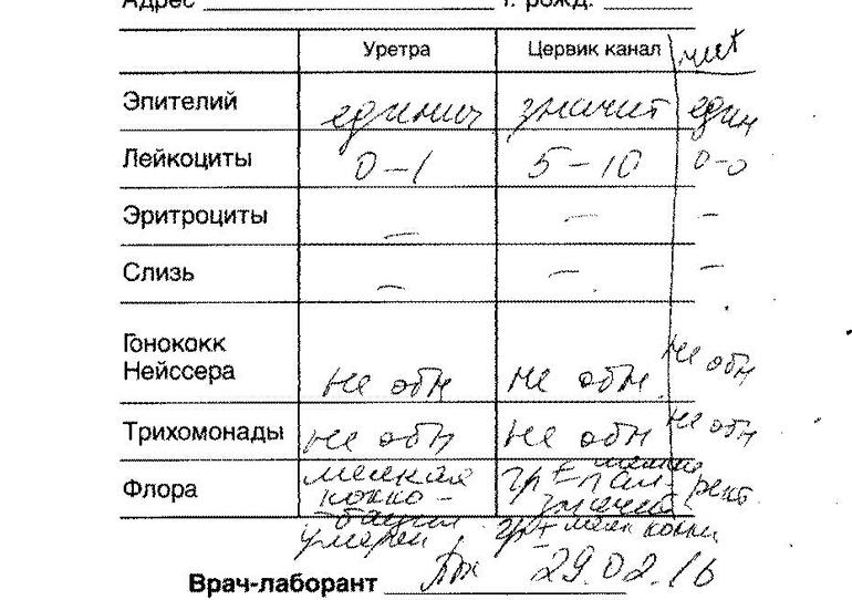 flora-kokki - запись пользователя Aleksandra (id1700869) в ...