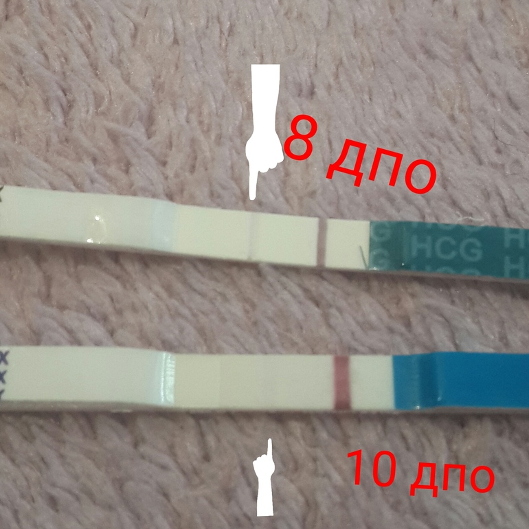 Тест на беременность 8 дпо фото