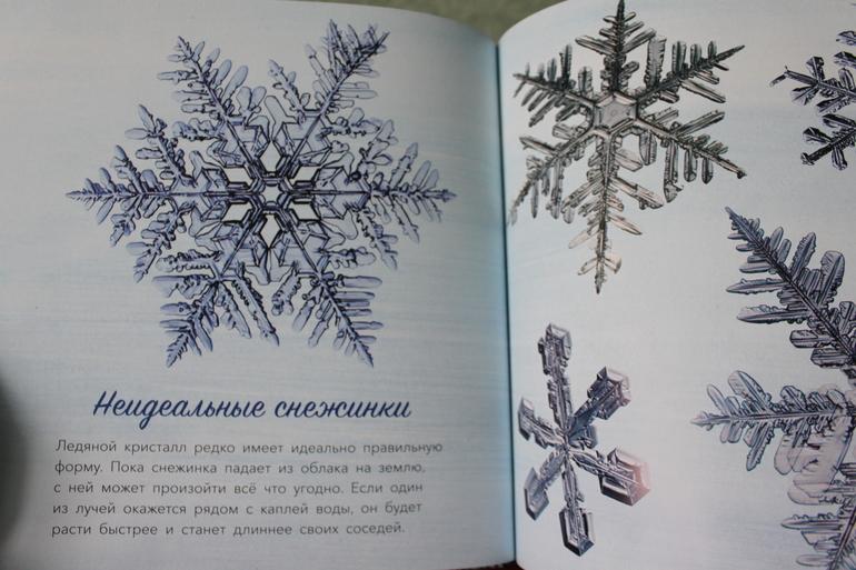 Прогноз погоды чарышском районе алтайского края